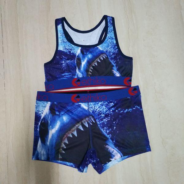 Blauer Hai