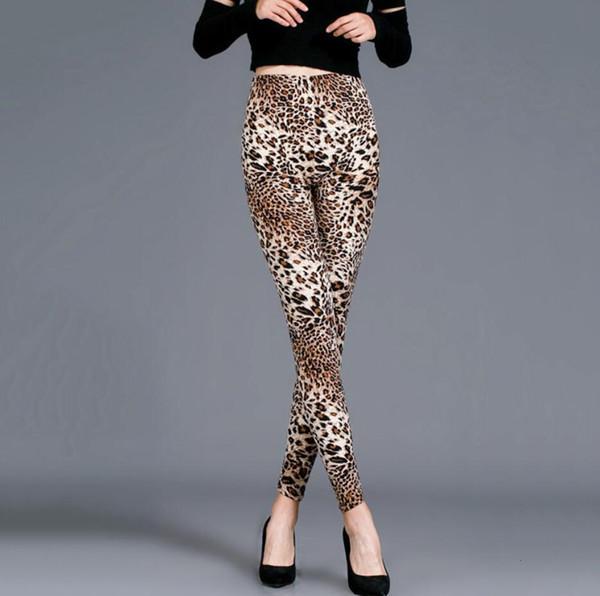 Orta Leopard