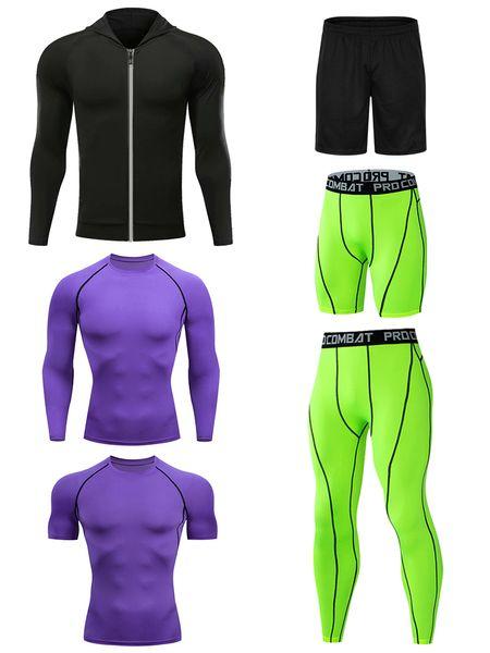 Violett-grün