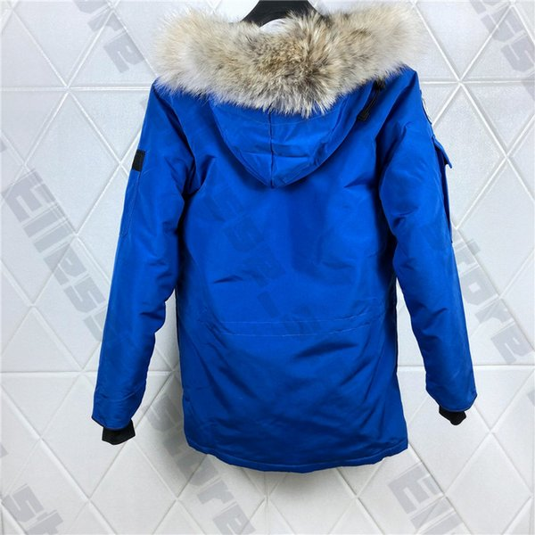 9-blue-with fur style