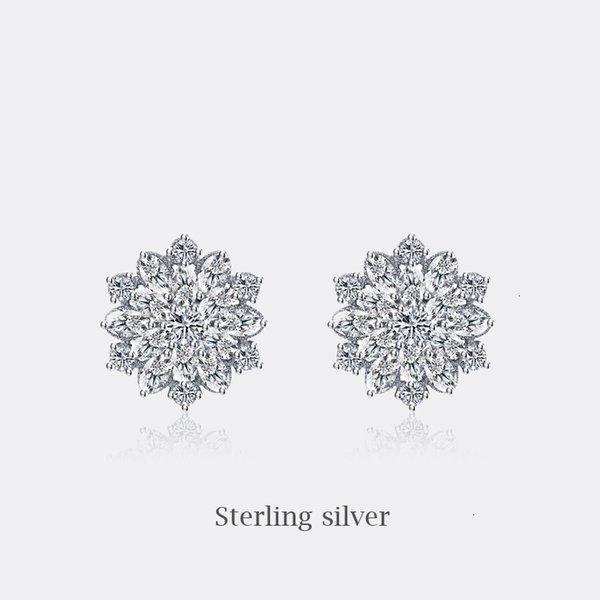 ED093-Aguja de plata pura
