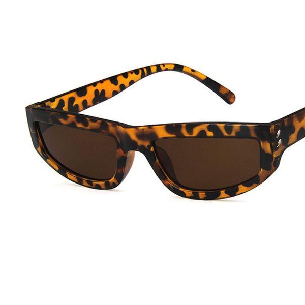C4 leopardo