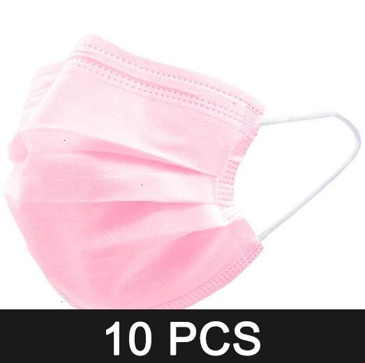 10pcs Rosa