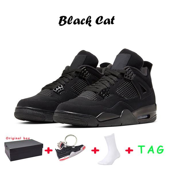 28 Black Cat