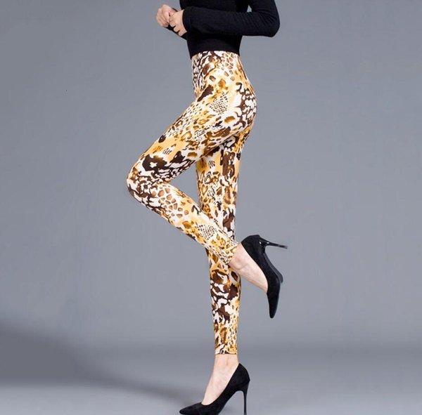 sarı leopar