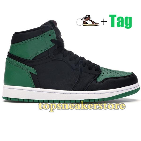 1s-Haut Pin Vert Noir