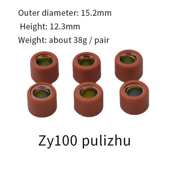 ZY100