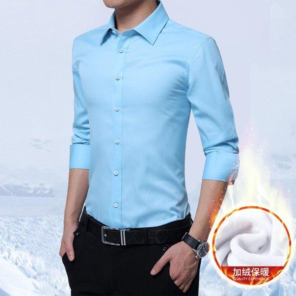 Peluche azzurro