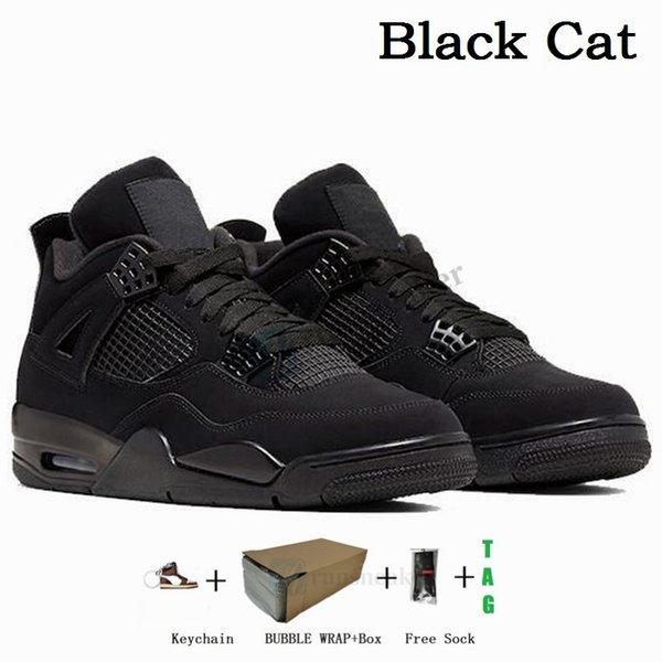 4s-Black Cat