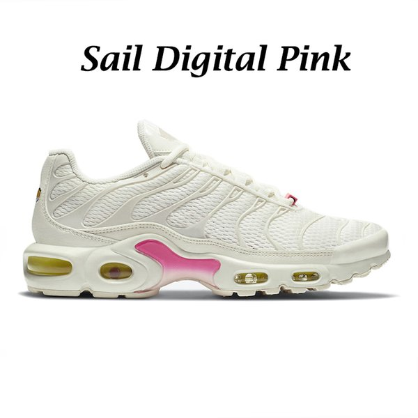 Sail Digital-Rosa