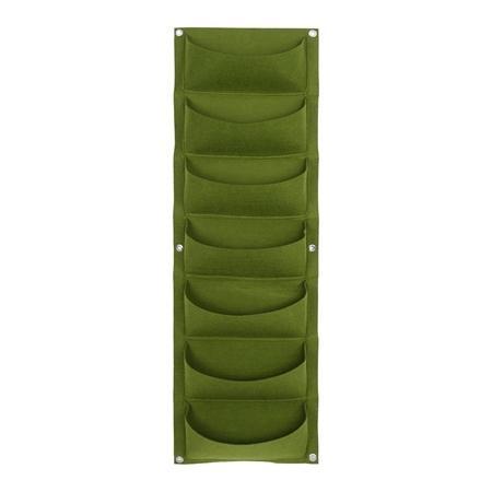 7 Pock verde