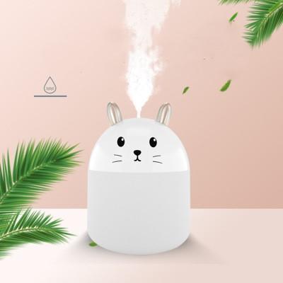 Rabbit_White
