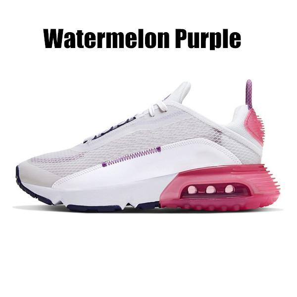 melon d'eau Purple36-40