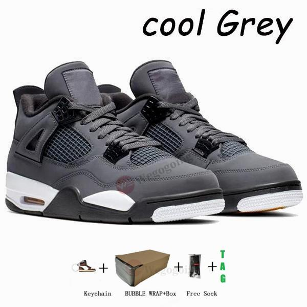 4s-Cool Grey