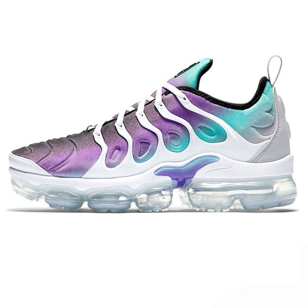 C14 fierce purple 36-47