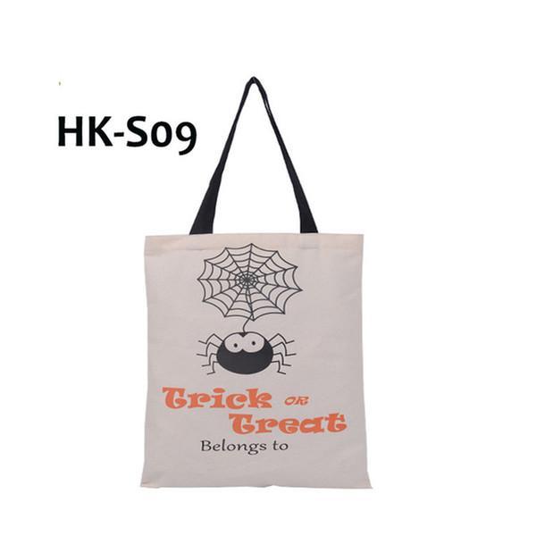 HK-S09