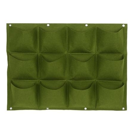 12 Pock verde