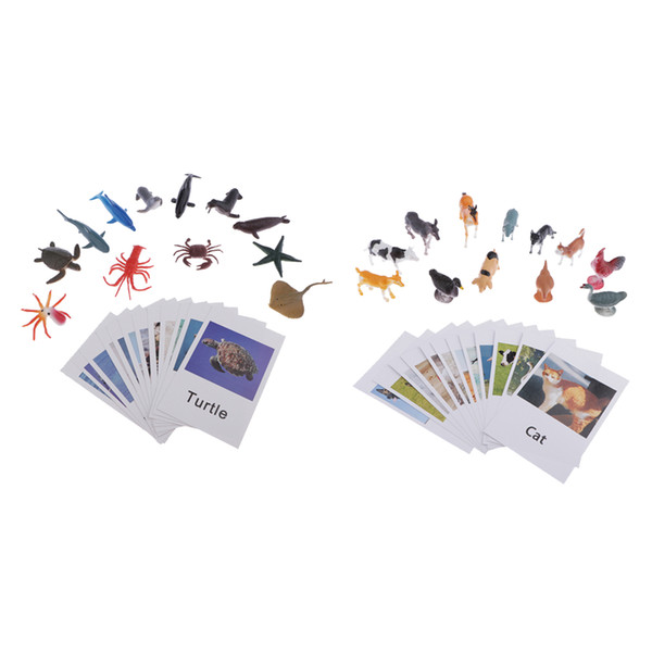 best selling Education Toy Animals Marine Organism Model Naming Cards for Montessori