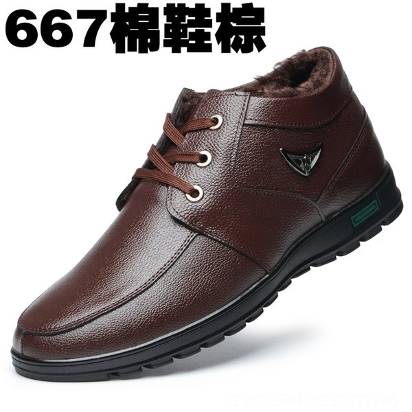 667 Brown 41