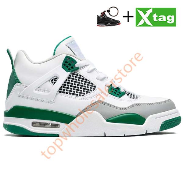 # 9- الصنوبر الأخضر