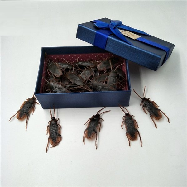 Exquisite Gift Box 25 Baratas - B16-