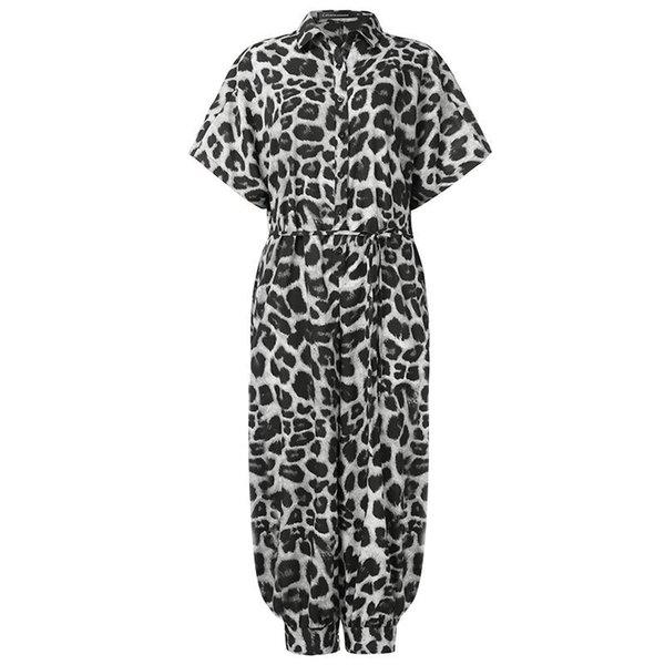 Leopardo gris oscuro