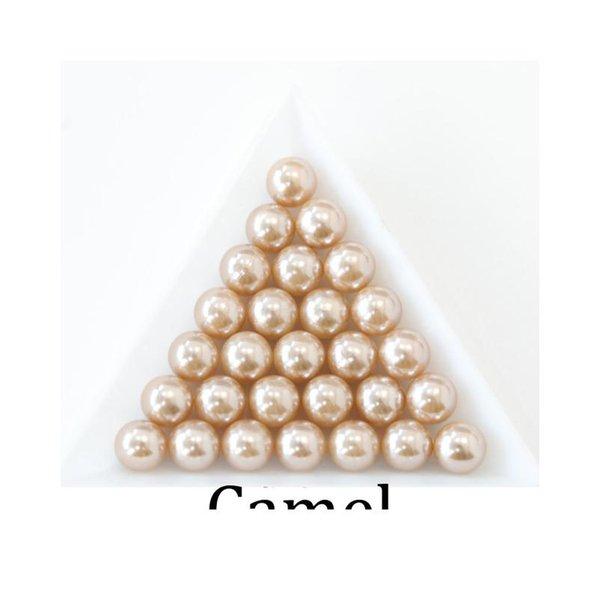 Camel_4602