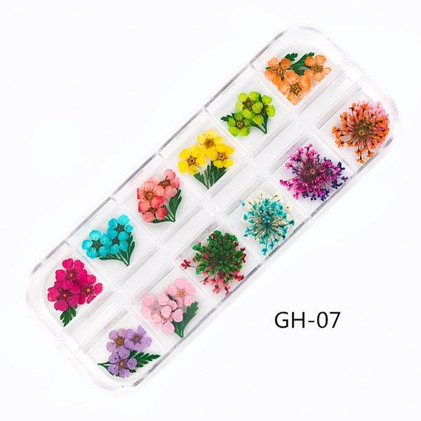 GH-07