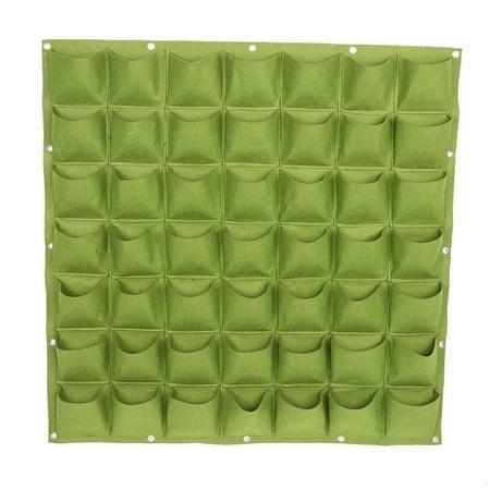 49 Pock verde