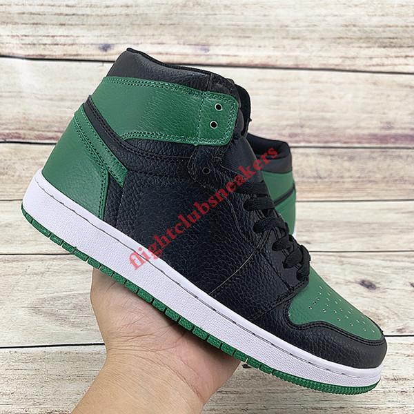 الصنوبر الأخضر الأسود