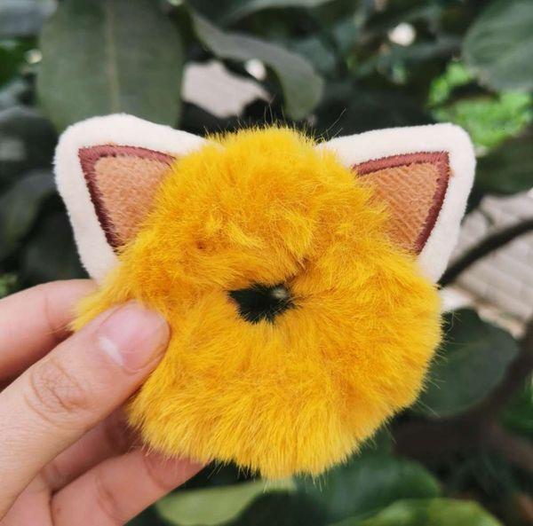 Katze # 039; s Ohren haben gelbe Haarkreise