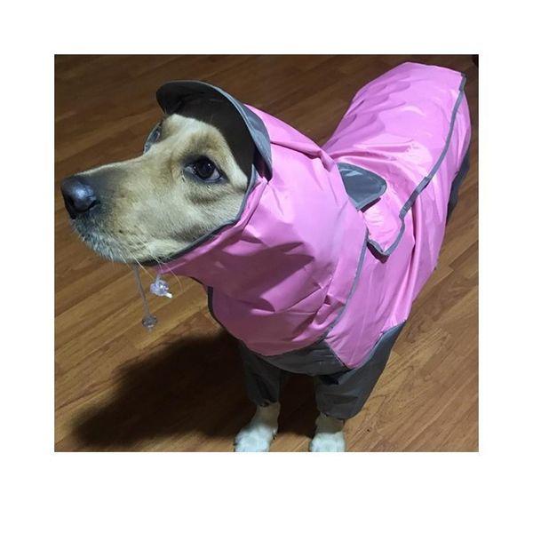 Pink_200661158
