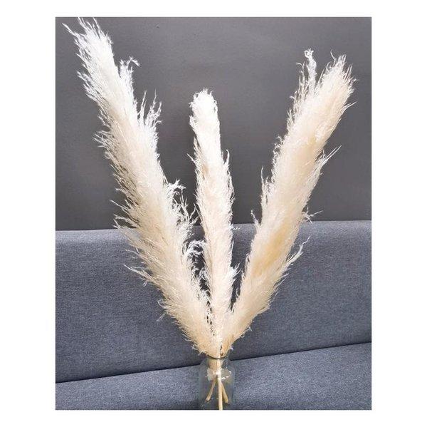 3pcs-beige white