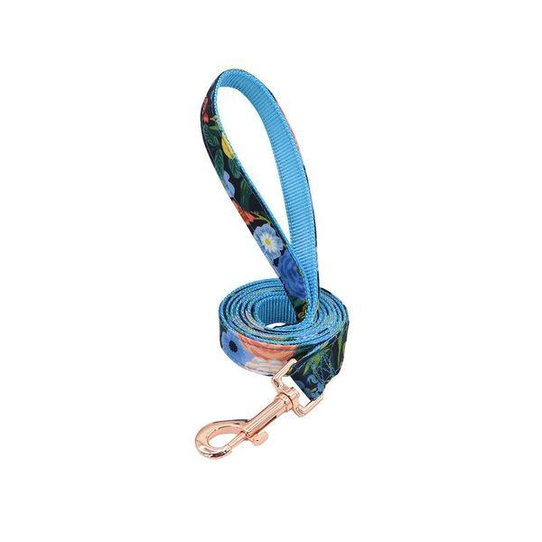 Blue leash_1052