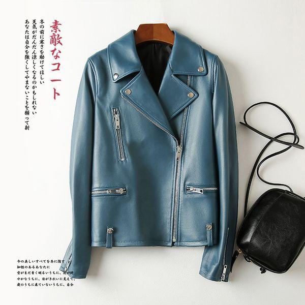 Azul-5xl