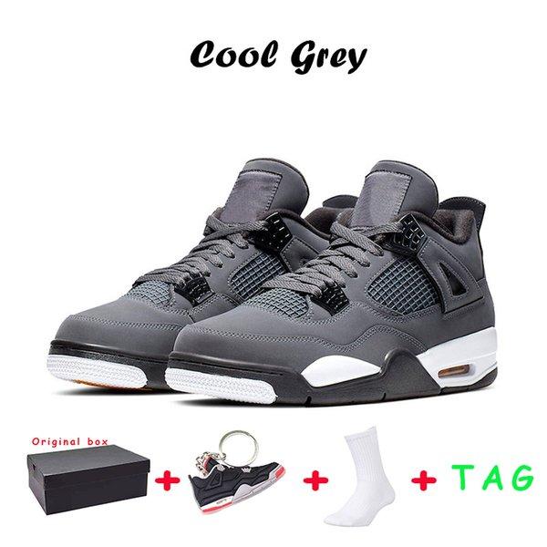 36 Cool Grey
