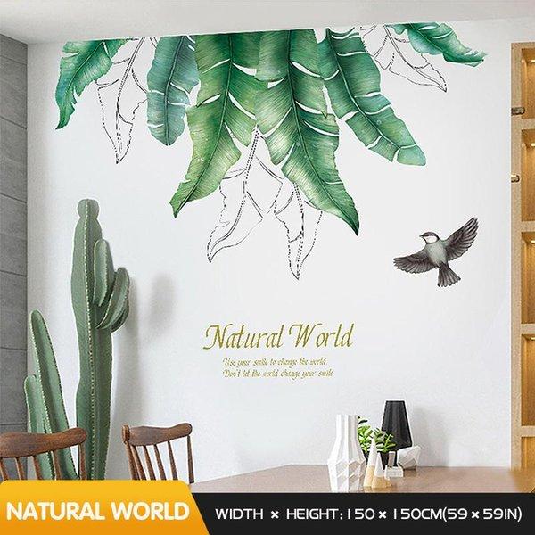 Doğal Dünya Çin XL