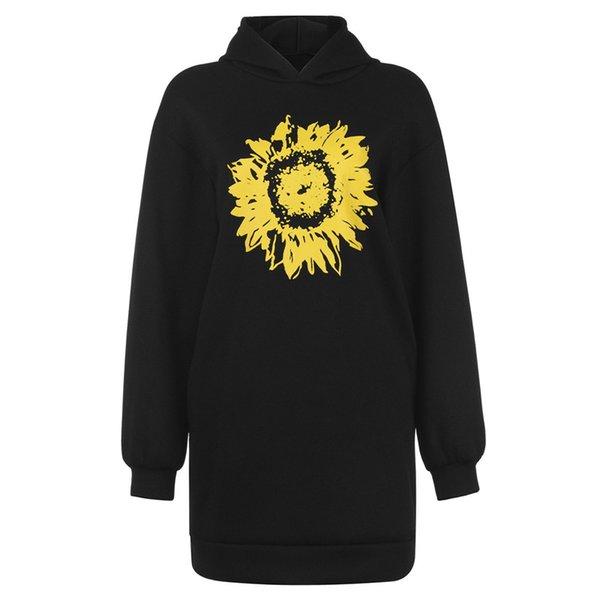 أسود عباد الشمس