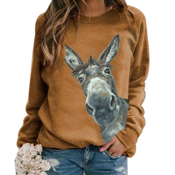 Khiki burro