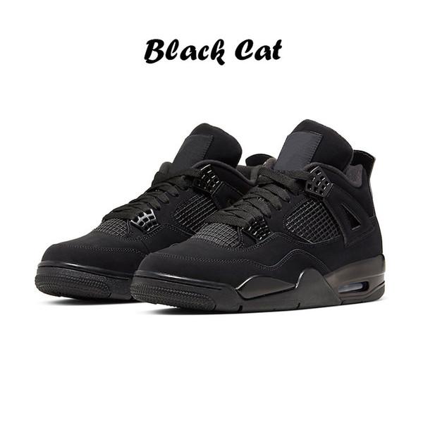 4 chat noir