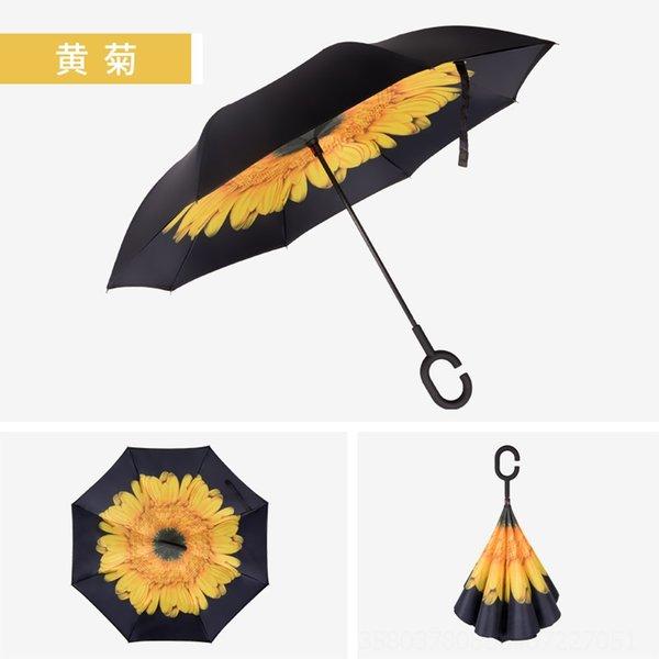 Crisantemo Morifolium-23-pulgada # 91596
