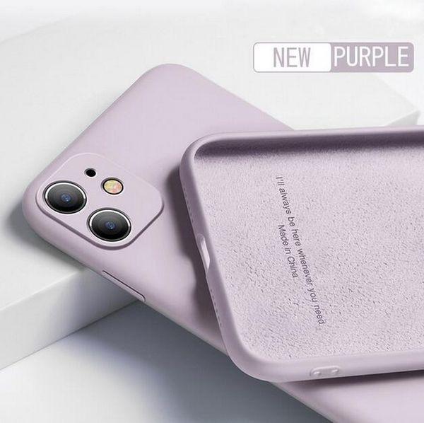 Herbe violette