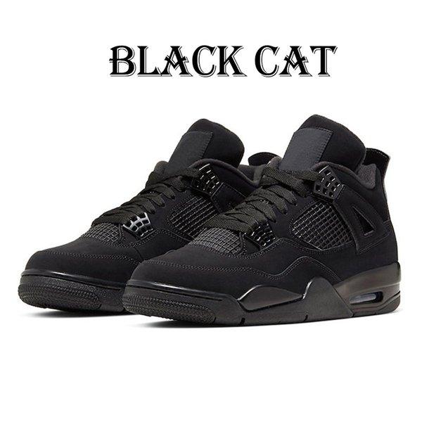 4S 5.5-13 القط الأسود