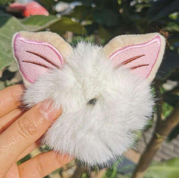 Der Fuchs hat weiße Haare auf den Ohren