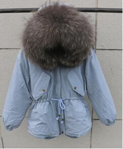 Blue And Grey Fur
