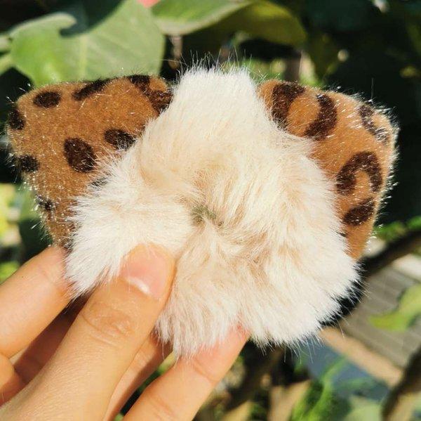 Leopard-Ohr-Reisweiß-Haar-Kreis