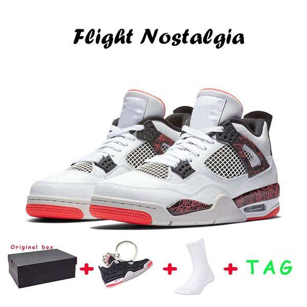 41 Flight Nostalgia