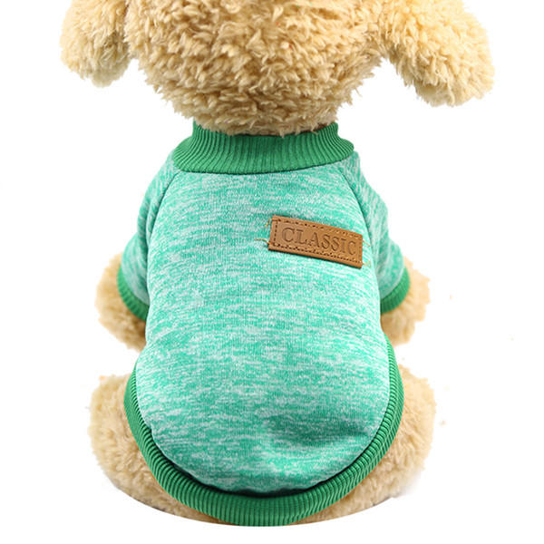 Pull de laine classique vert