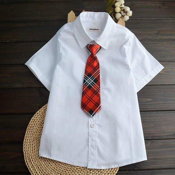 Cravate plate +