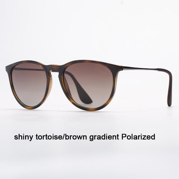 Tortue 710 / T5 Tortue brillante / gradient brun